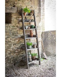 Aldsworth Shelf Ladder | Garden Trading Company